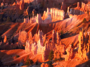 Early Morning at Bryce Canyon